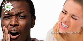 O que é bom para dor de dente? Aprenda truques e remédios para dor noturna e dor do dente siso