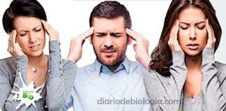Chá para dor de cabeça: Aprenda 5 chás para curar sua cefaleia