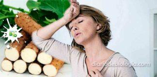 Remédio caseiro para menopausa: 7 receitas fáceis tiro e queda