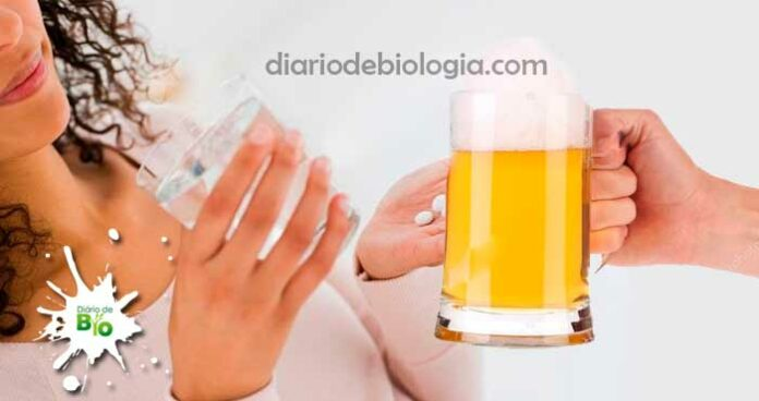 Alcool e antibiótico