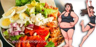 receita e cardápio de alimentos da dieta low carb