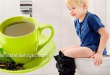 Chá para diarreia: tudo que você precisa saber e as melhores receitas