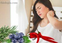 anti-inflamatorio-natural
