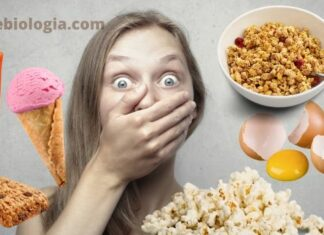 10 alimentos que fazem mal a saúde você vai ficar surpreso